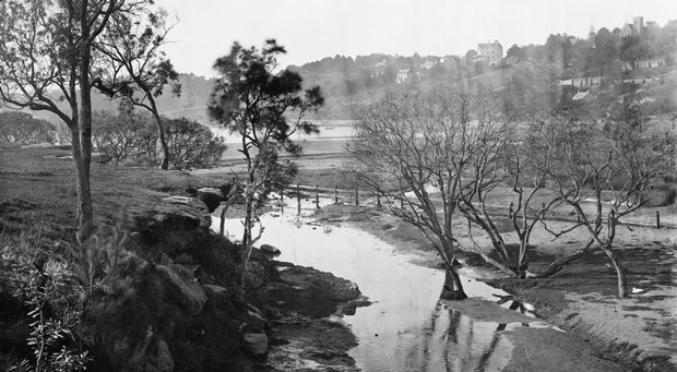 Rushcutters Creek, 1870-75 (Mitchell Library, State Library of NSW  - ON 4 Box 56 No 253)
